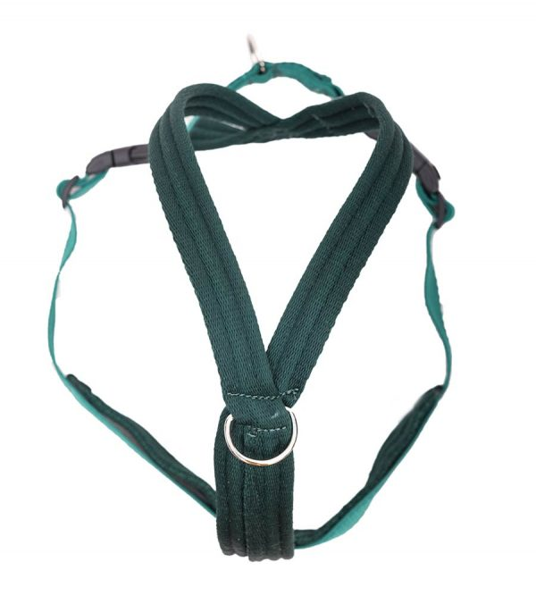 Space K9 Cushion web harness racing green