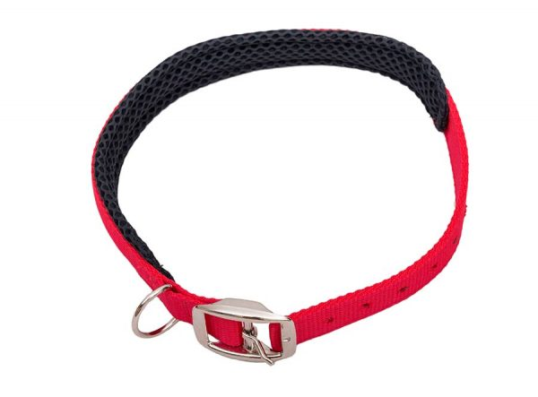 Space K9 Cushioned Dog collars red